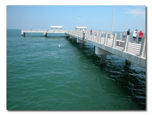 Fort desoto fishing pier for Fort desoto fishing pier