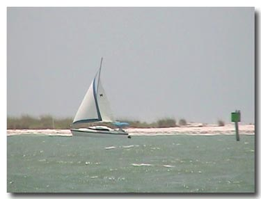 sailing near shell key